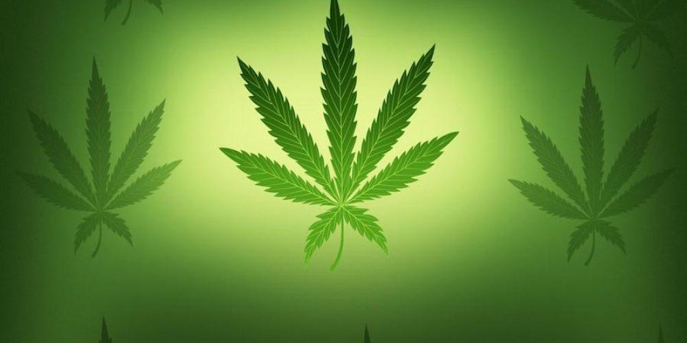 El 4 /20, Día Mundial de la Marihuana